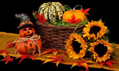 stroje na halloween dla dzieci i dorosłych